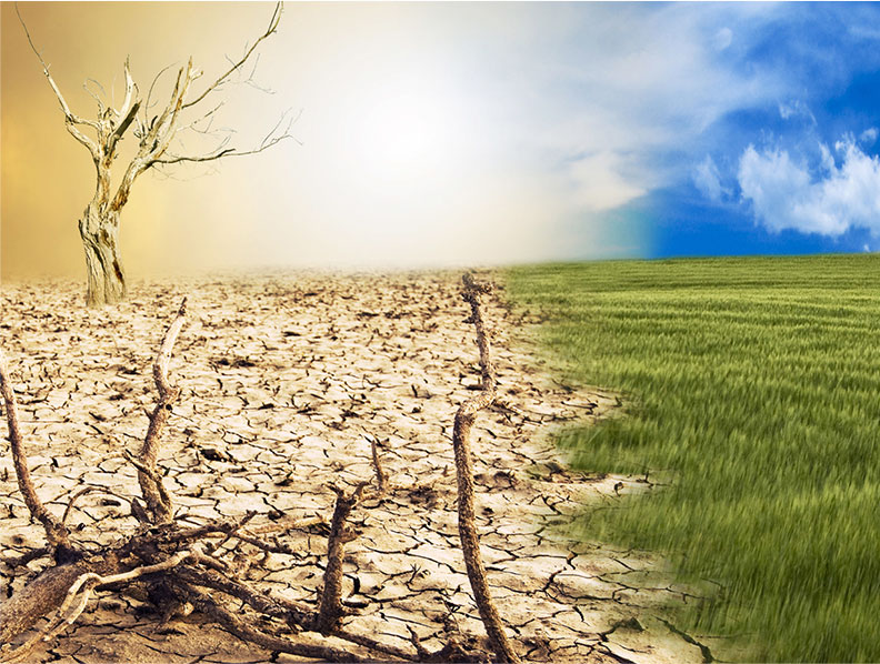 Mitigate and maybe solve the climate crisis